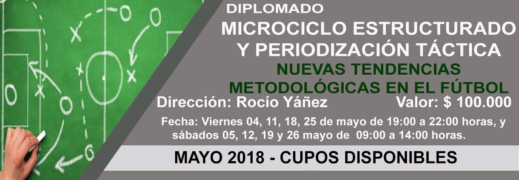 DIPLOMADO-MCE-y-PT-1