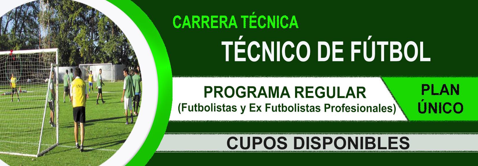 técnico-de-fútbol-2